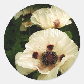 Oriental Poppies In Cream Classic Round Sticker