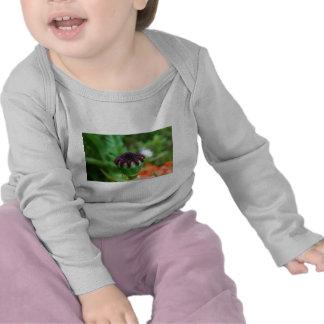 Oriental Poppy Bud Tee Shirts