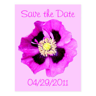 Oriental Poppy 'Save the Date' postcard pink