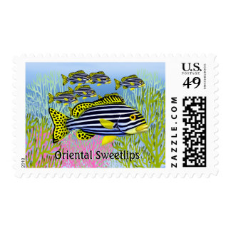 Oriental Sweetlips Reef Fish Postage
