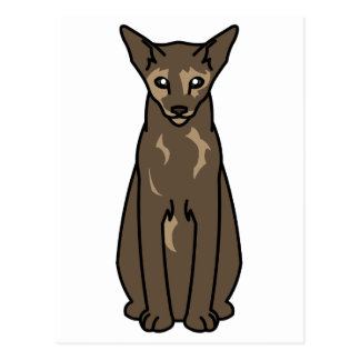 Oriental Tortie Cat Cartoon Postcard