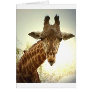 Orig de la jirafa - zaz tarjeton