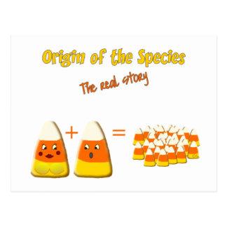 Origin of The Species Postcard