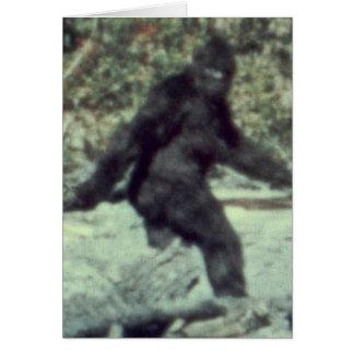 ORIGINAL 1967 BIGFOOT SASQUATCH PHOTO CARD