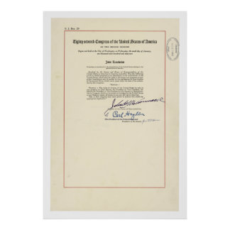 ORIGINAL 24th Amendment U.S. Constitution Poster