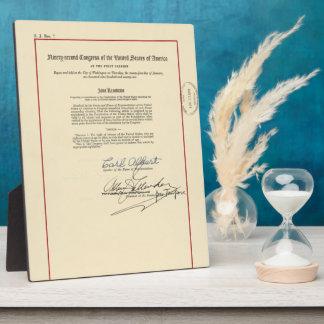 ORIGINAL 26th Amendment U.S. Constitution Plaque