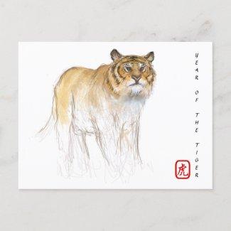 Original Drawing Chinese Tiger Year Birthday HPC Holiday Postcard