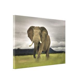 Original Elephant In Long Grass Canvas Print