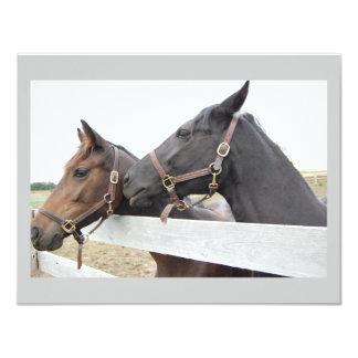 Original Horse Whisperer Card