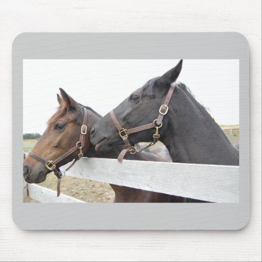 Original Horse Whisperer Mousepad