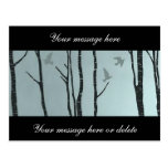 Original silver birch, bird - wedding, civil postcard