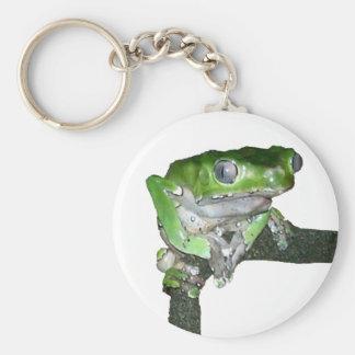 Original Tree Frog Key Chain