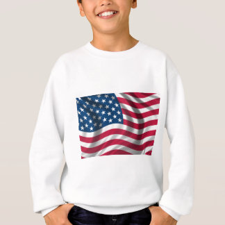 Original USA flag Sweatshirt