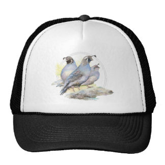 Original Watercolor California Quail Bird Trucker Hat