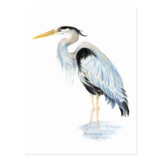 Original watercolor Great Blue Heron Bird Postcard