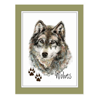 Original Watercolor Grey  Wolf- Tracks Animal Postcard