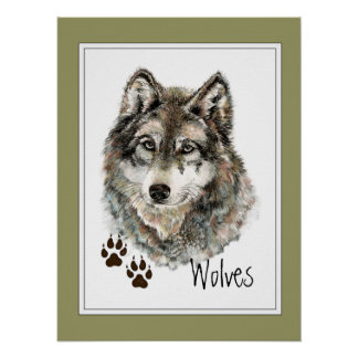 Original Watercolor Grey  Wolf- Tracks Animal Poster