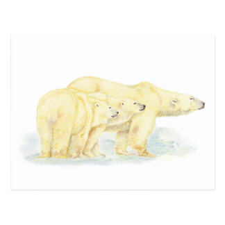 Original Watercolor Polar Bear Family Animal Postcard