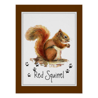 Original Watercolor Red Squirrel Tracks Animal Poster