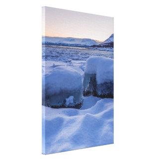 Orilla congelada de la impresión de la foto de lona estirada galerias