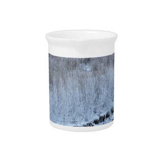Orilla congelada jarra