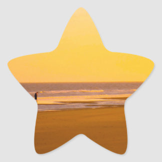 Orilla de oro en la isla de palmas colcomanias forma de estrella