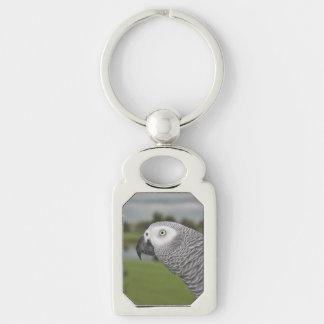 Orilla del lago del gris africano llavero plateado rectangular