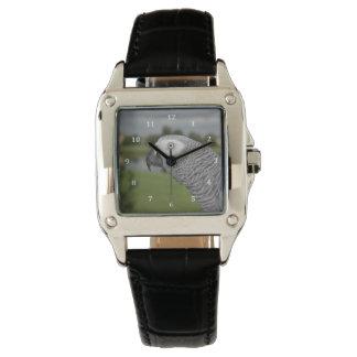 Orilla del lago del gris africano relojes