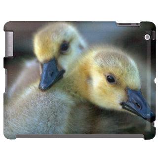 Orilla del lago funda para iPad