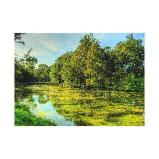 Orilla del lago lona envuelta para galerias