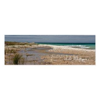 Orilla del lago Michigan Tarjetas De Visita Mini