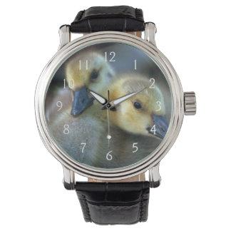 Orilla del lago relojes de pulsera