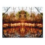 Orilla del lago tarjetas postales