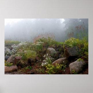 Orilla del norte de niebla posters