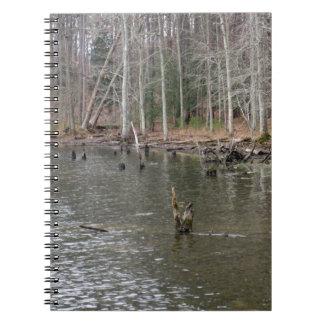 Orilla del río libros de apuntes