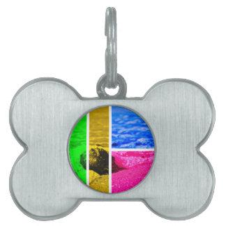 Orilla Placas Mascota