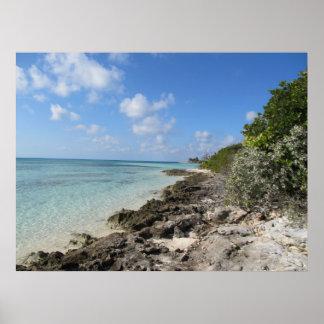 Orilla rocosa - isleta de los Cocos Póster