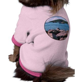 Orilla rocosa St Thomas Camisetas De Perrito
