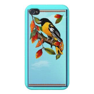 Oriole en caída iPhone 4/4S carcasas