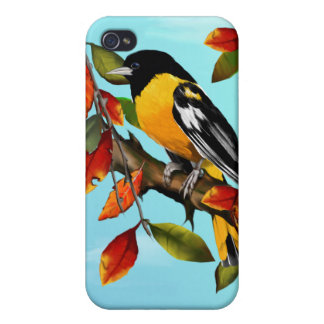 Oriole In Fall  Cases For iPhone 4