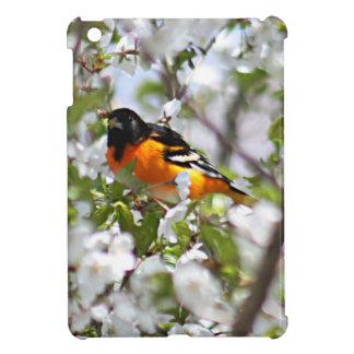 Oriole photo iPad mini cover