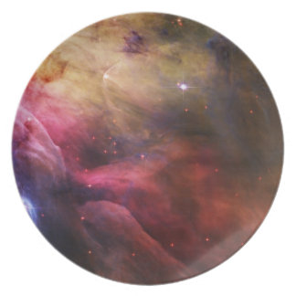 Orion dinner party plates