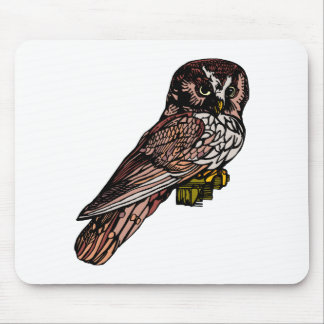 Orion Owl Mouse Pad