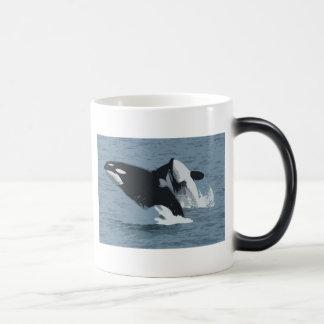 Orka Whale Mugs
