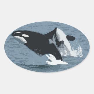 Orka Whale Oval Sticker