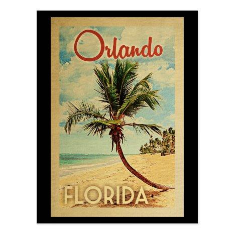Orlando Palm Tree Vintage Travel Postcard
