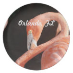 Orlando Party Plate