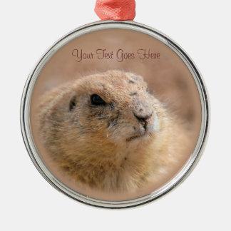 Ornament: Black-tailed Prairie Dog (Premium Round)