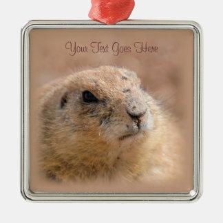 Ornament: Black-tailed Prairie Dog (Premium Sqr)