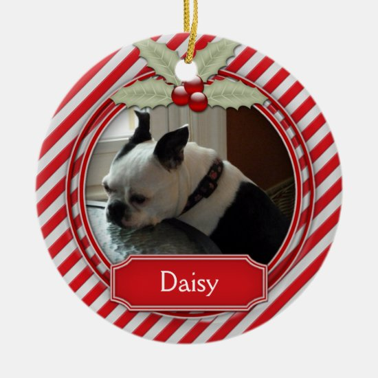 Ornament Candy Cane Stripe Holly For Pets